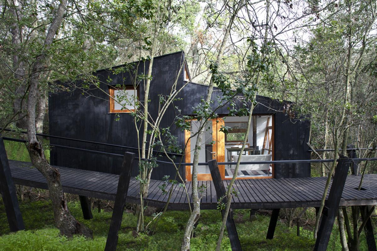 Revestida por painéis de madeira coloridos por tinta preta a fachada  #4D5D34 1200x800 Banheiro Coletivo Arquitetura